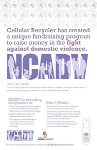 NCADV_Poster
